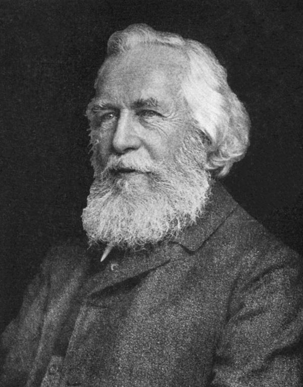 <b>Ernst Haeckel</b> (1834-1919) - Ernst_Haeckel